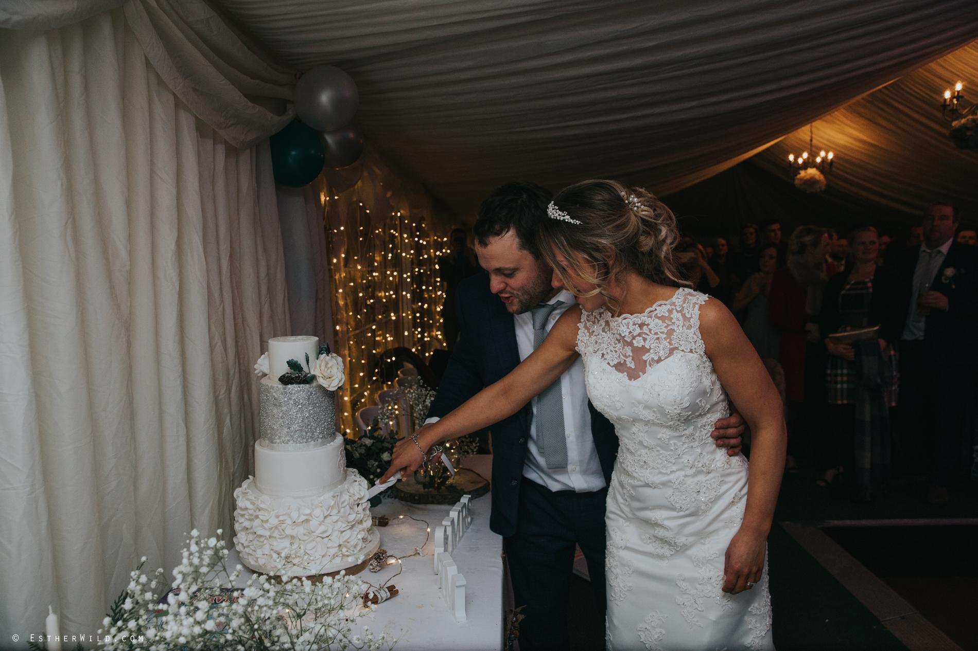 Wedding_Photography_Diss_Gawdy_Hall_Redenhall_Church_Norfolk_Winter_Esther_Wild_Copyright_IMG_2459.jpg