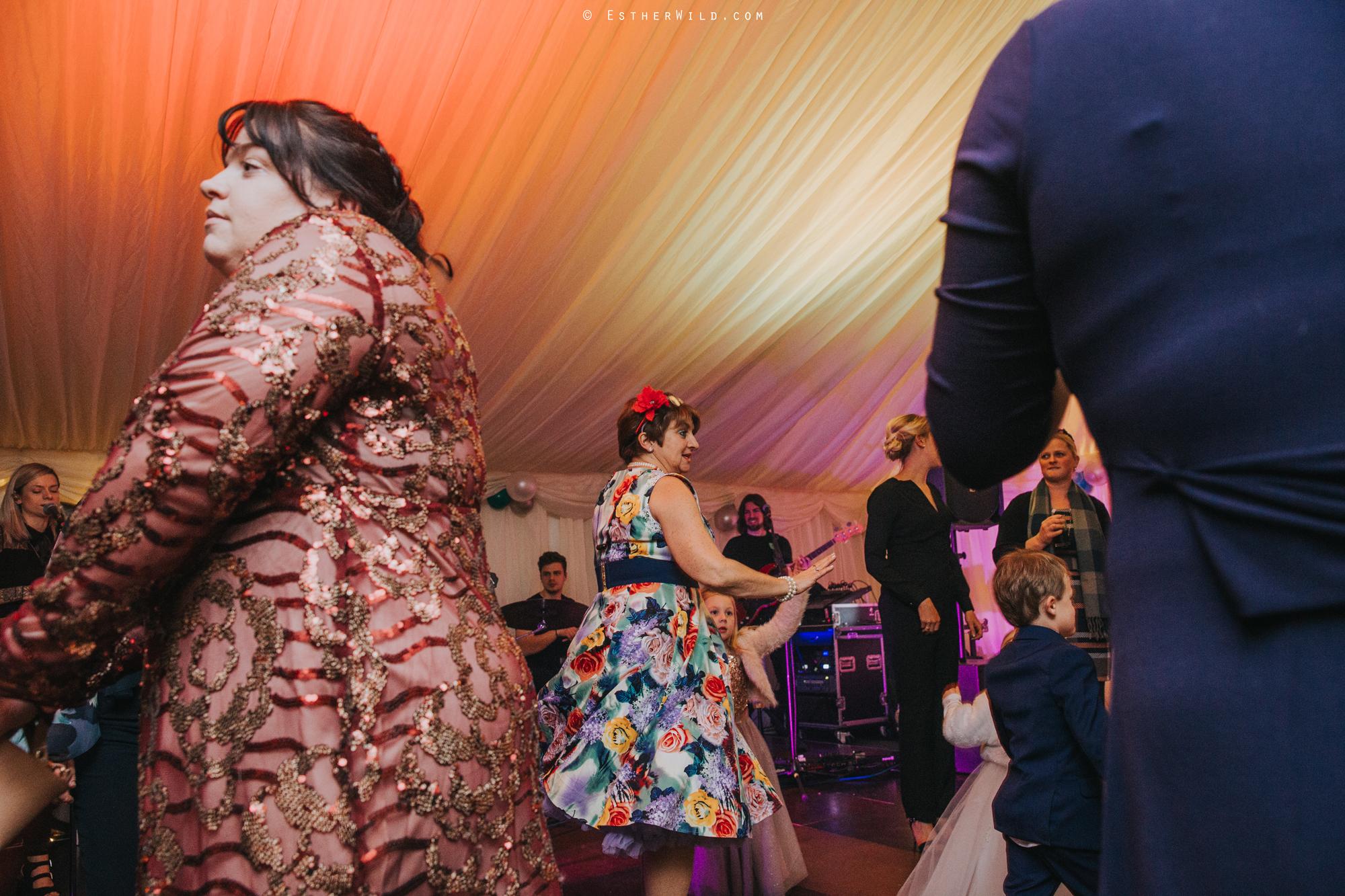 Wedding_Photography_Diss_Gawdy_Hall_Redenhall_Church_Norfolk_Winter_Esther_Wild_Copyright_IMG_2602.jpg