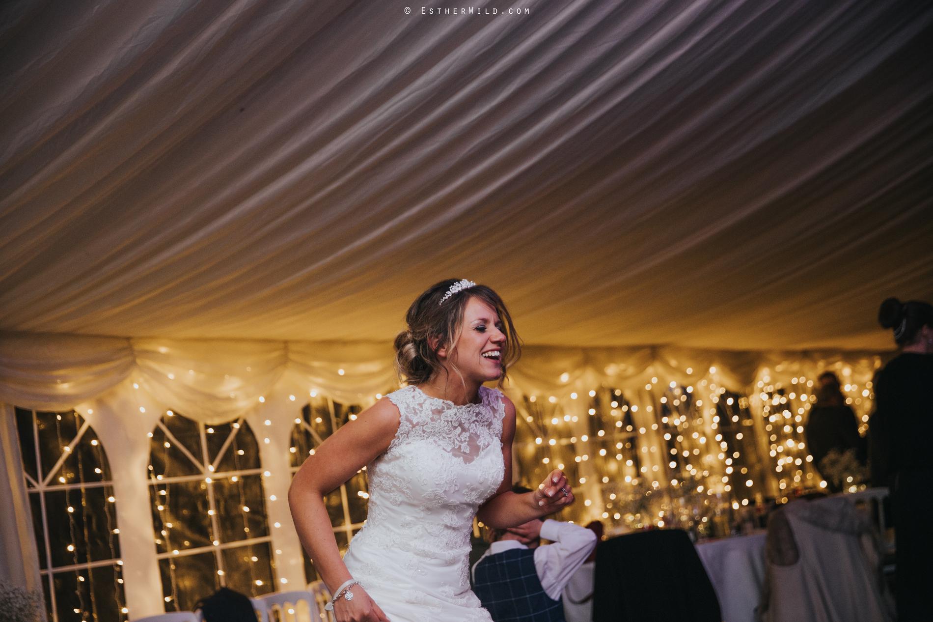 Wedding_Photography_Diss_Gawdy_Hall_Redenhall_Church_Norfolk_Winter_Esther_Wild_Copyright_IMG_2763.jpg