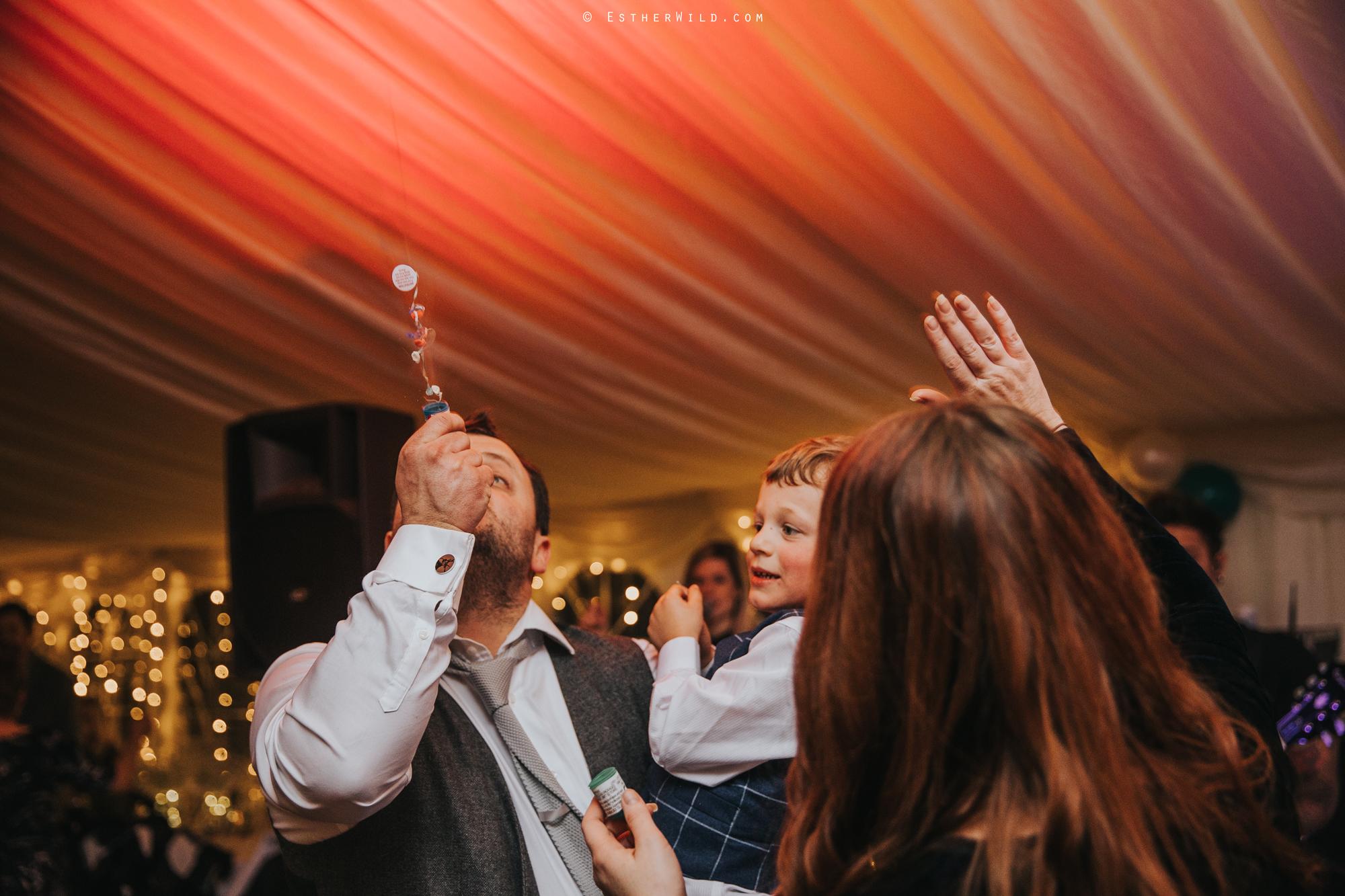 Wedding_Photography_Diss_Gawdy_Hall_Redenhall_Church_Norfolk_Winter_Esther_Wild_Copyright_IMG_2835.jpg