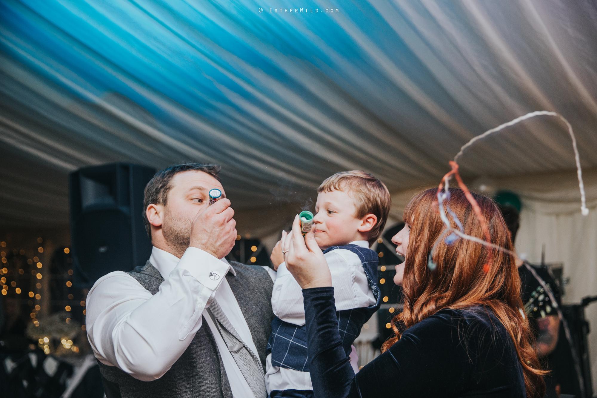 Wedding_Photography_Diss_Gawdy_Hall_Redenhall_Church_Norfolk_Winter_Esther_Wild_Copyright_IMG_2828.jpg