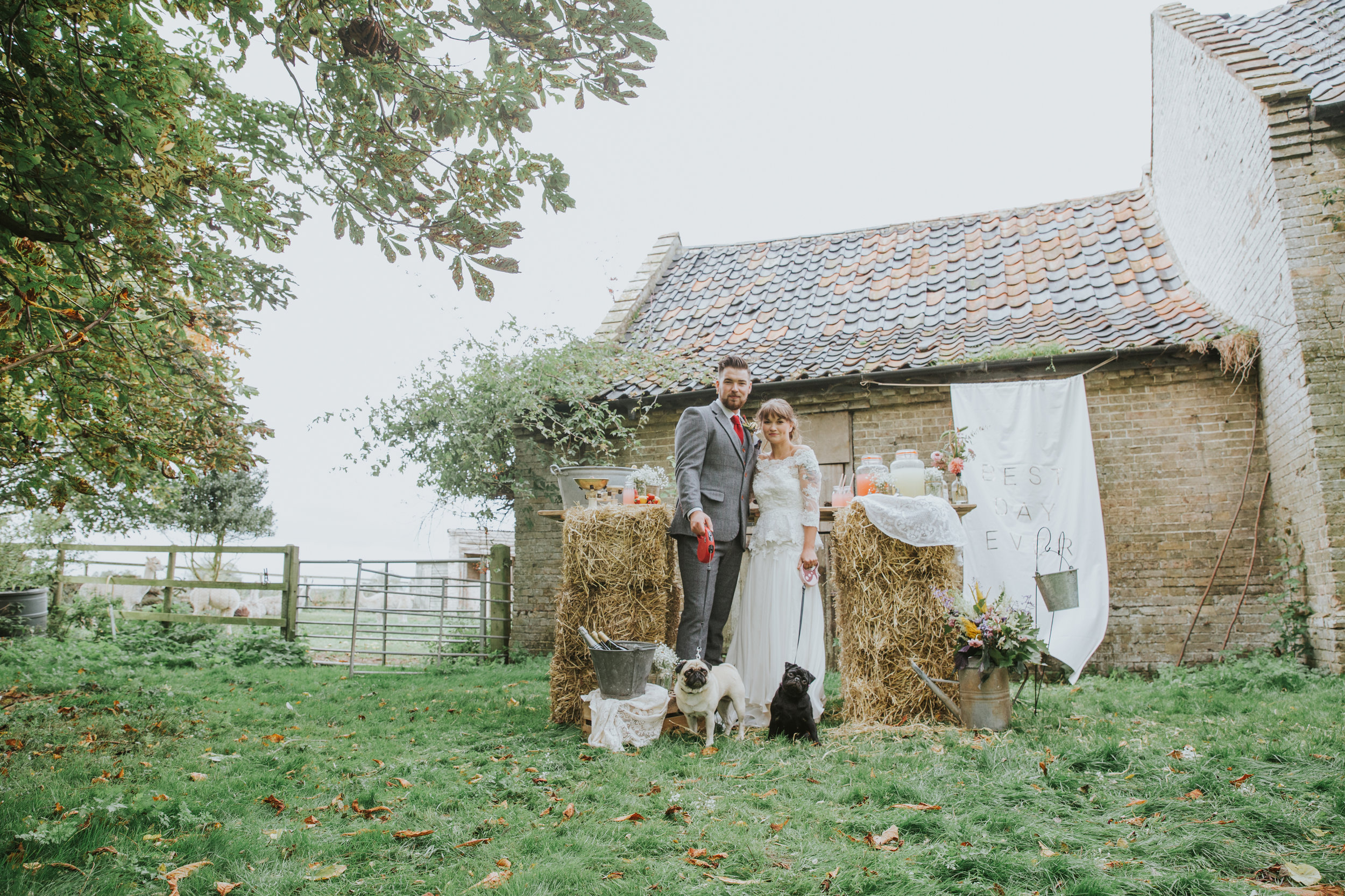 Esther_Wild_Little_Horse_Box_Norfolk_Wedding_IMG_3120.jpg