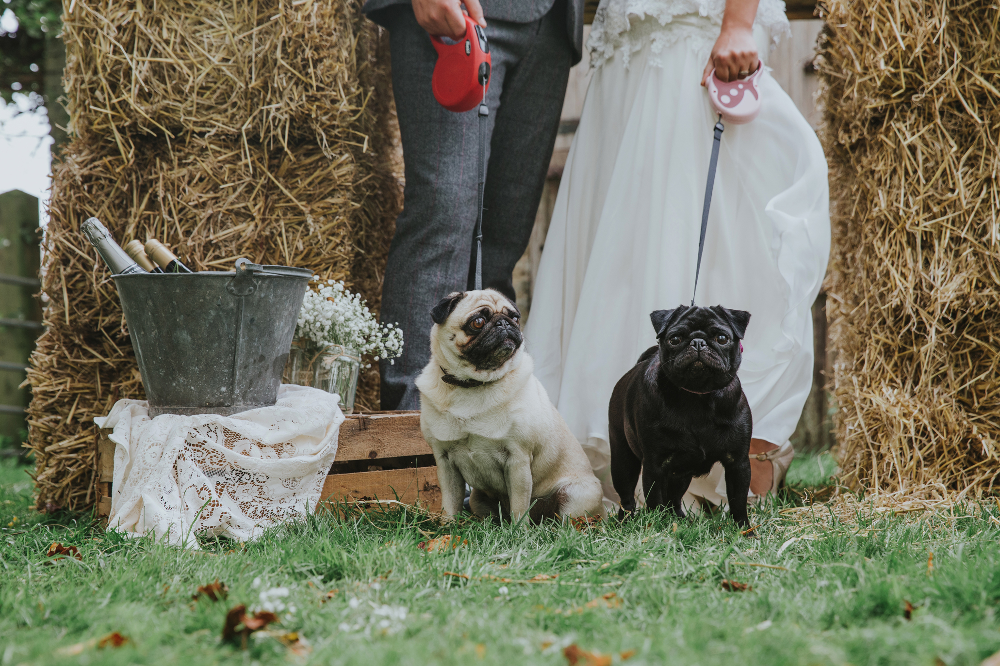 Esther_Wild_Little_Horse_Box_Norfolk_Wedding_IMG_3129.jpg