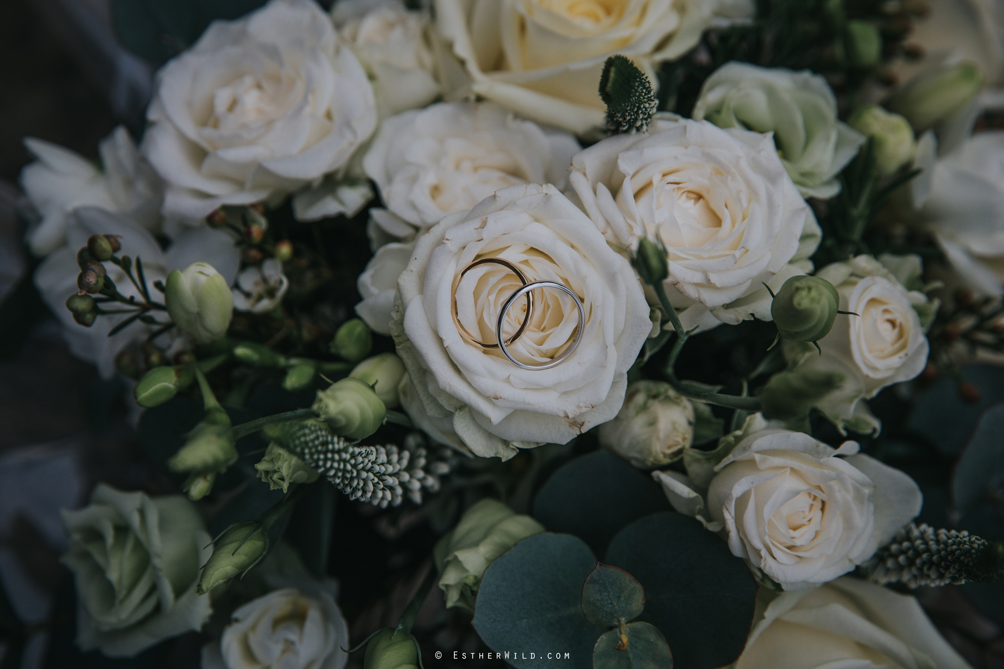 Elms_Barn_Weddings_Suffolk_Photographer_Copyright_Esther_Wild_IMG_0303.jpg