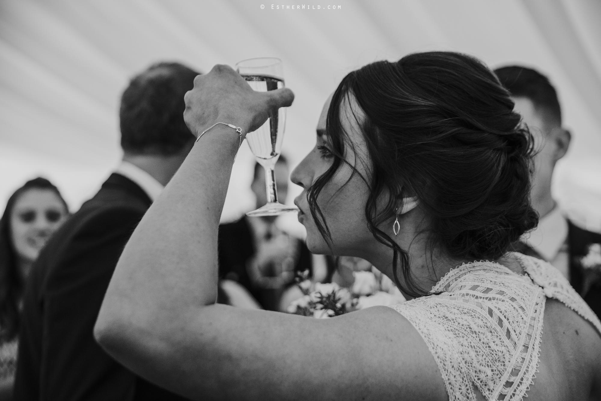 Elms_Barn_Weddings_Suffolk_Photographer_Copyright_Esther_Wild_IMG_1451-2.jpg