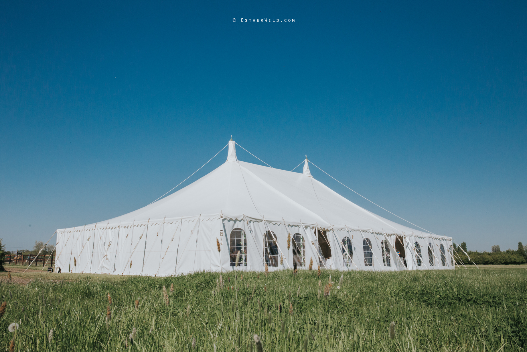 IMG_1169Walpole_St_Andrew_Church_Norfolk_Wedding_Copyright_Esther_Wild_Photographer_.jpg