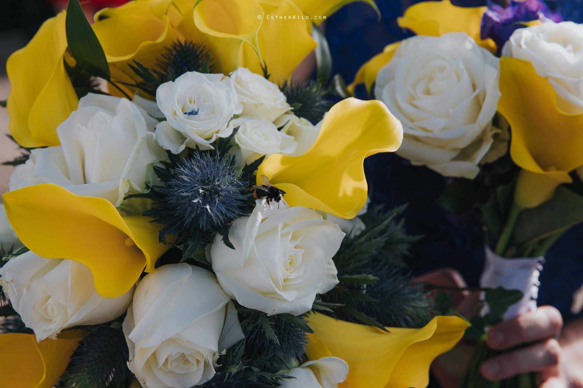 Old_Hall_Ely_Wedding_Esther_Wild_Photographer_IMG_2556.jpg