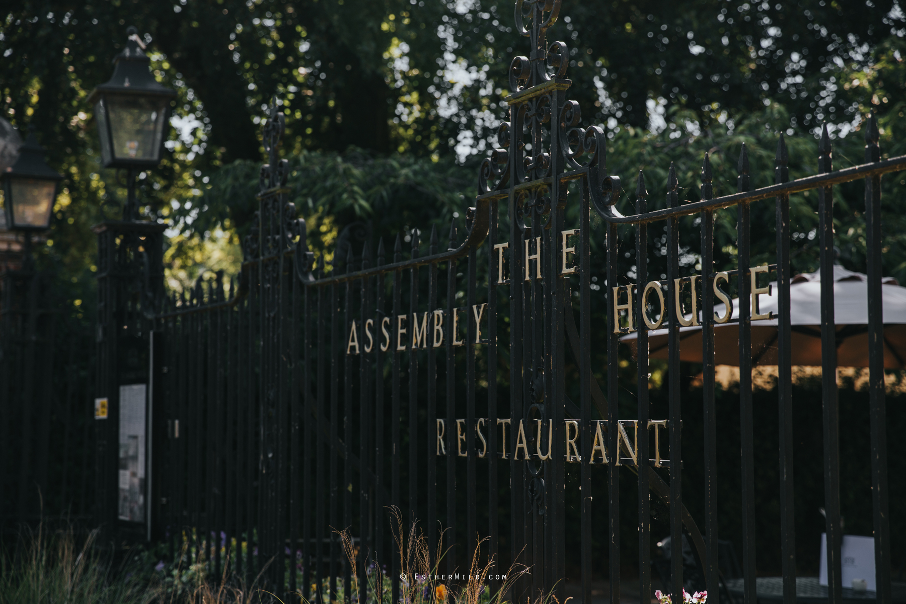 Assembly_House_Norwich_Norfolk_Esther_Wild_Photographer_IMG_0112.jpg