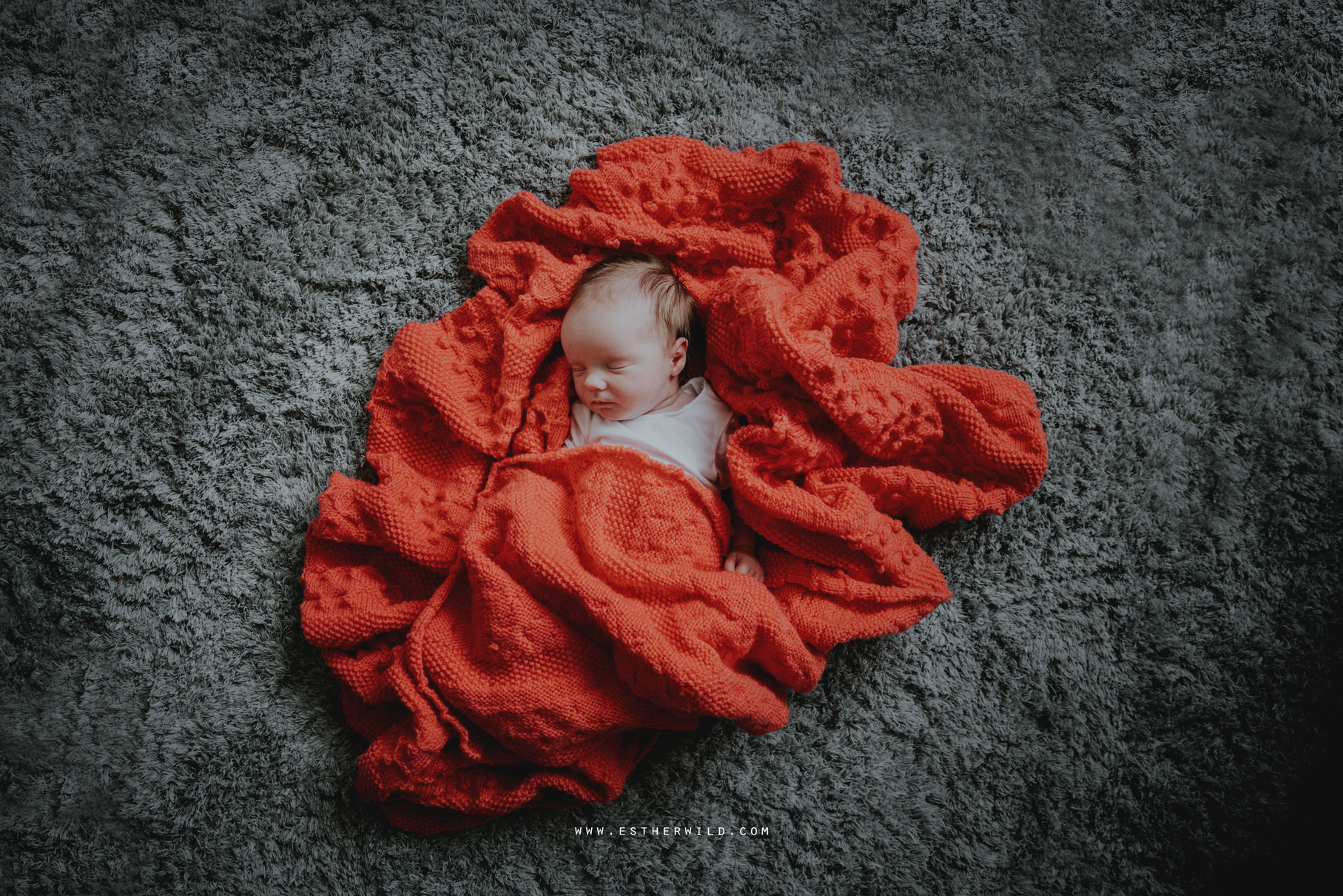 Newborn_Family_Photographer_London_Home_Lifestyle_Norfolk_3R8A4071.jpg