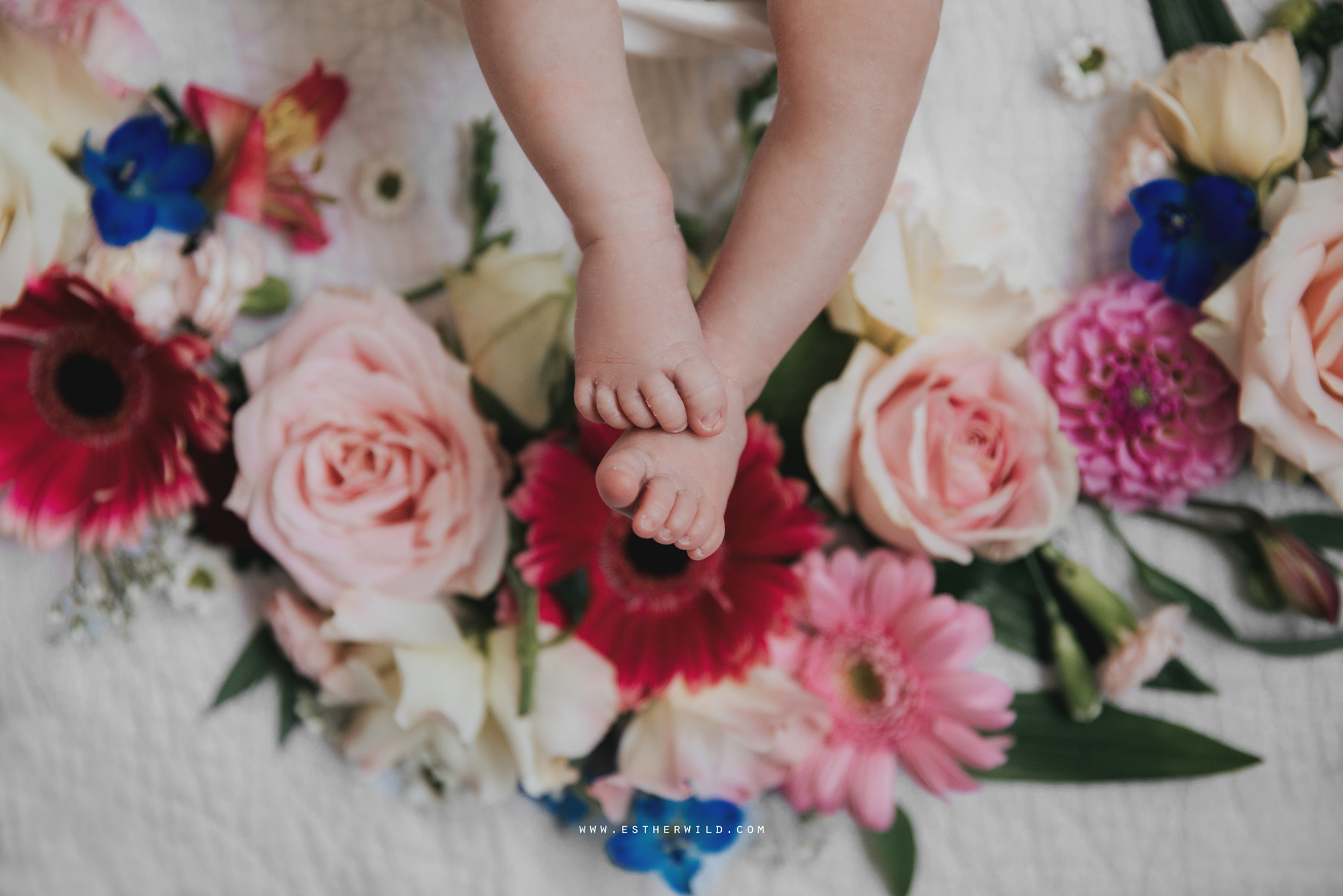 Newborn_Family_Photographer_Home_Norfolk_3R8A3786.jpg
