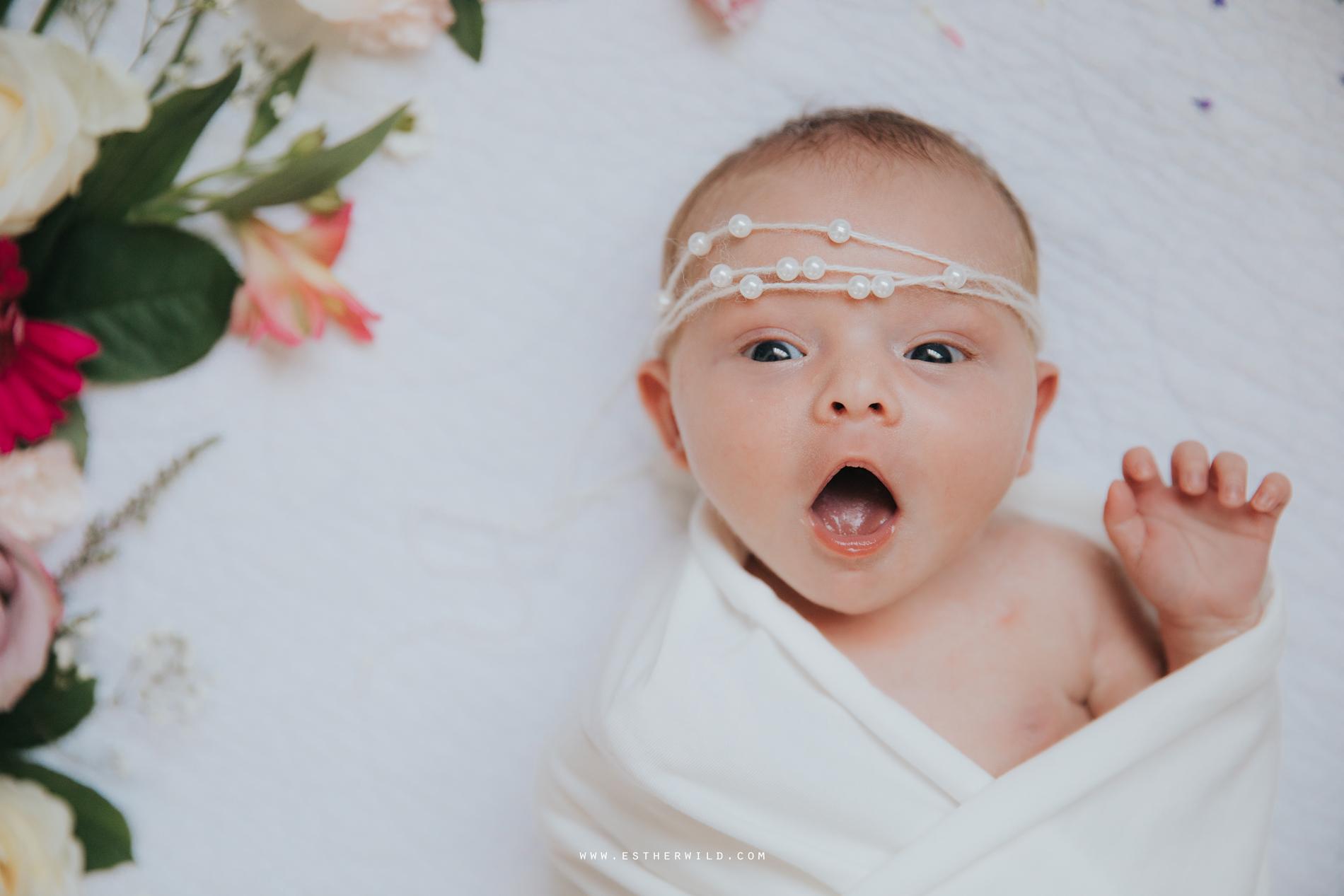 Newborn_Family_Photographer_Home_Norfolk_3R8A3768.jpg