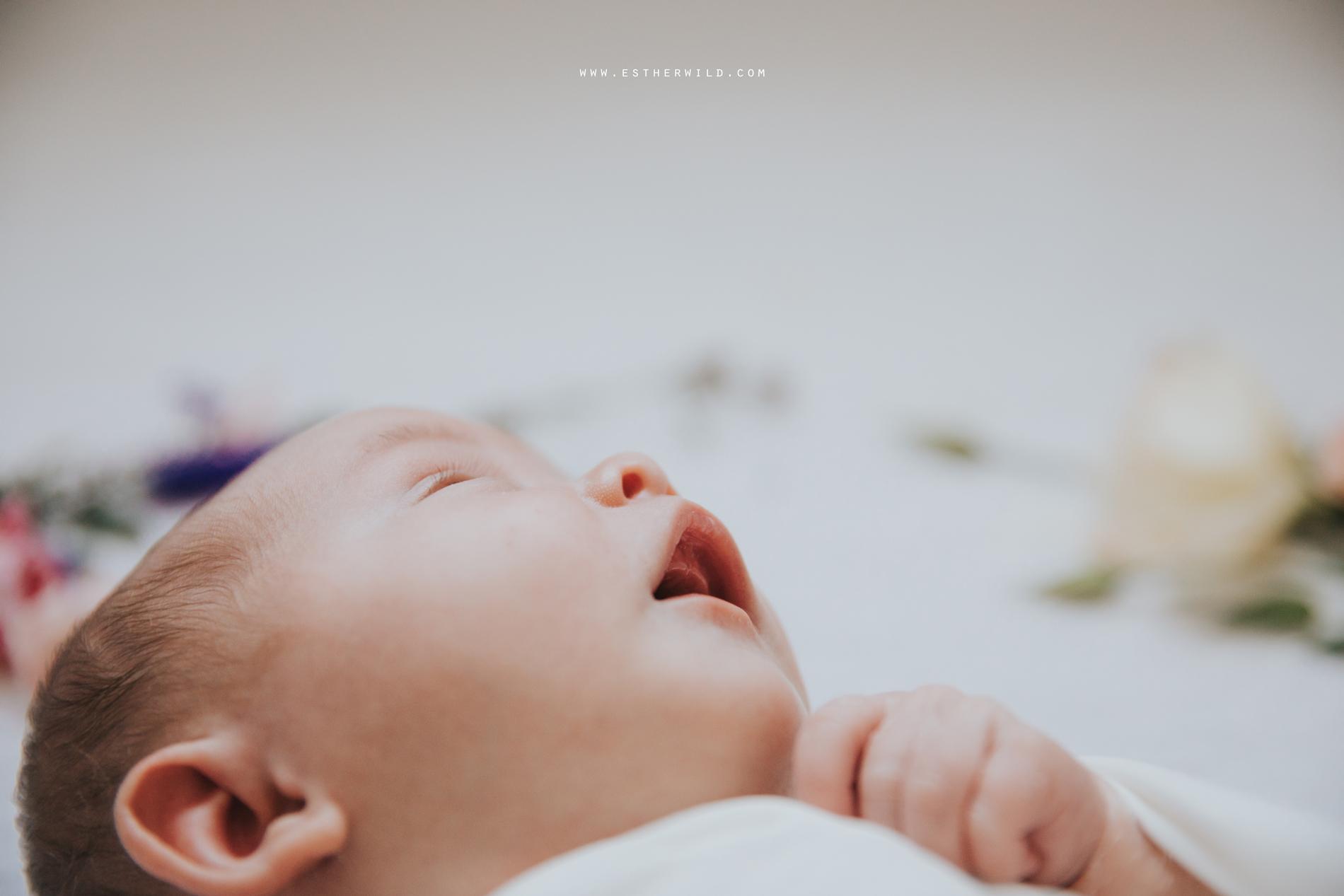 Newborn_Family_Photographer_Home_Norfolk_3R8A3824.jpg