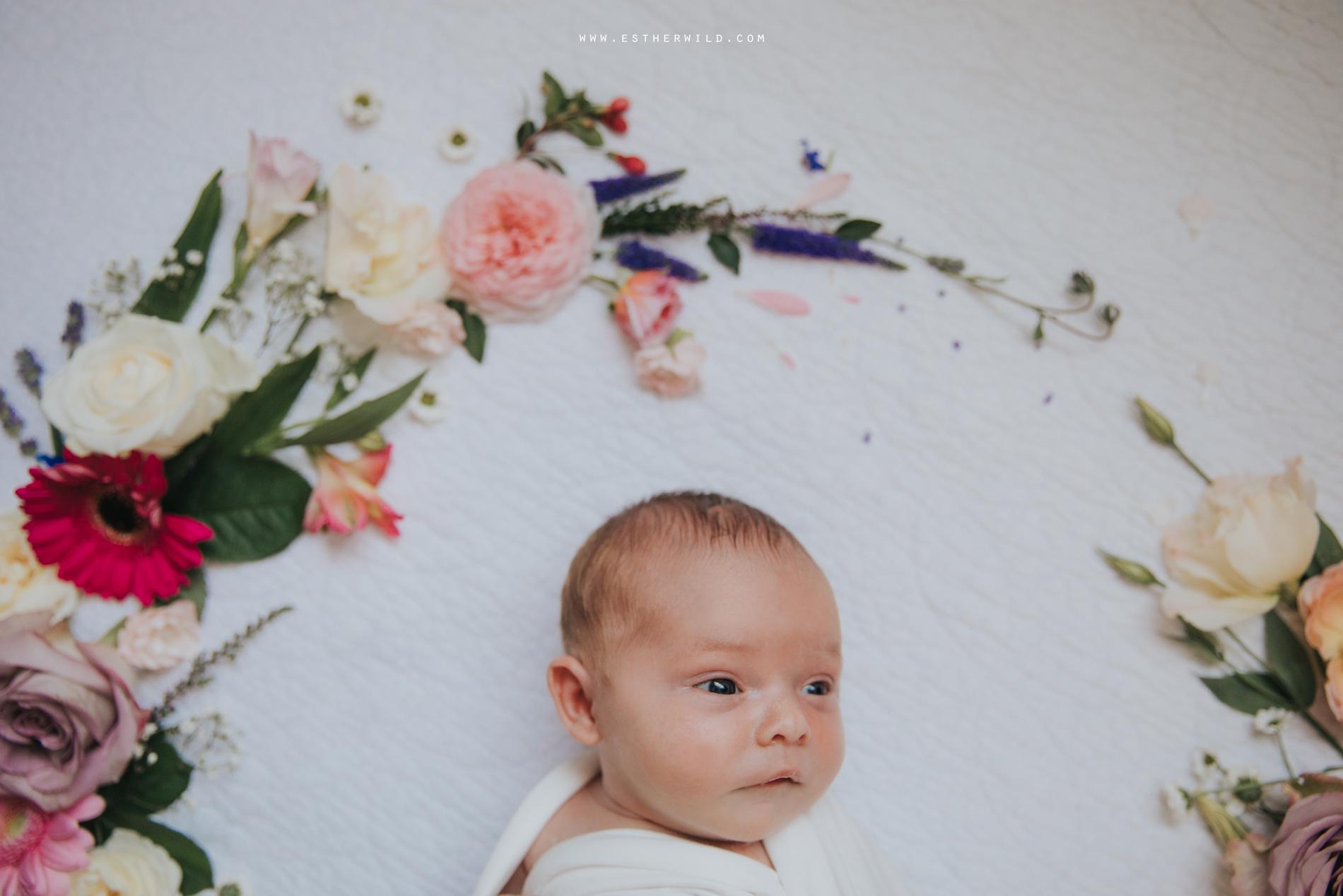 Newborn_Family_Photographer_Home_Norfolk_3R8A3822.jpg
