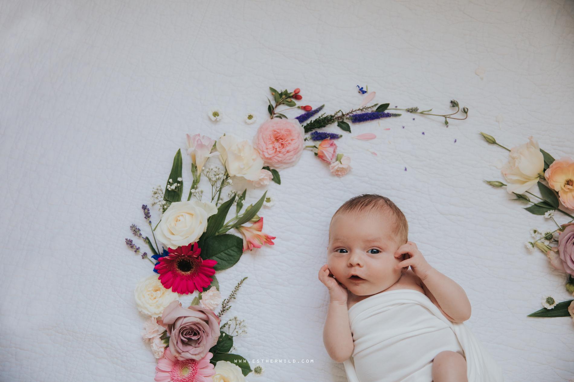 Newborn_Family_Photographer_Home_Norfolk_3R8A3835.jpg