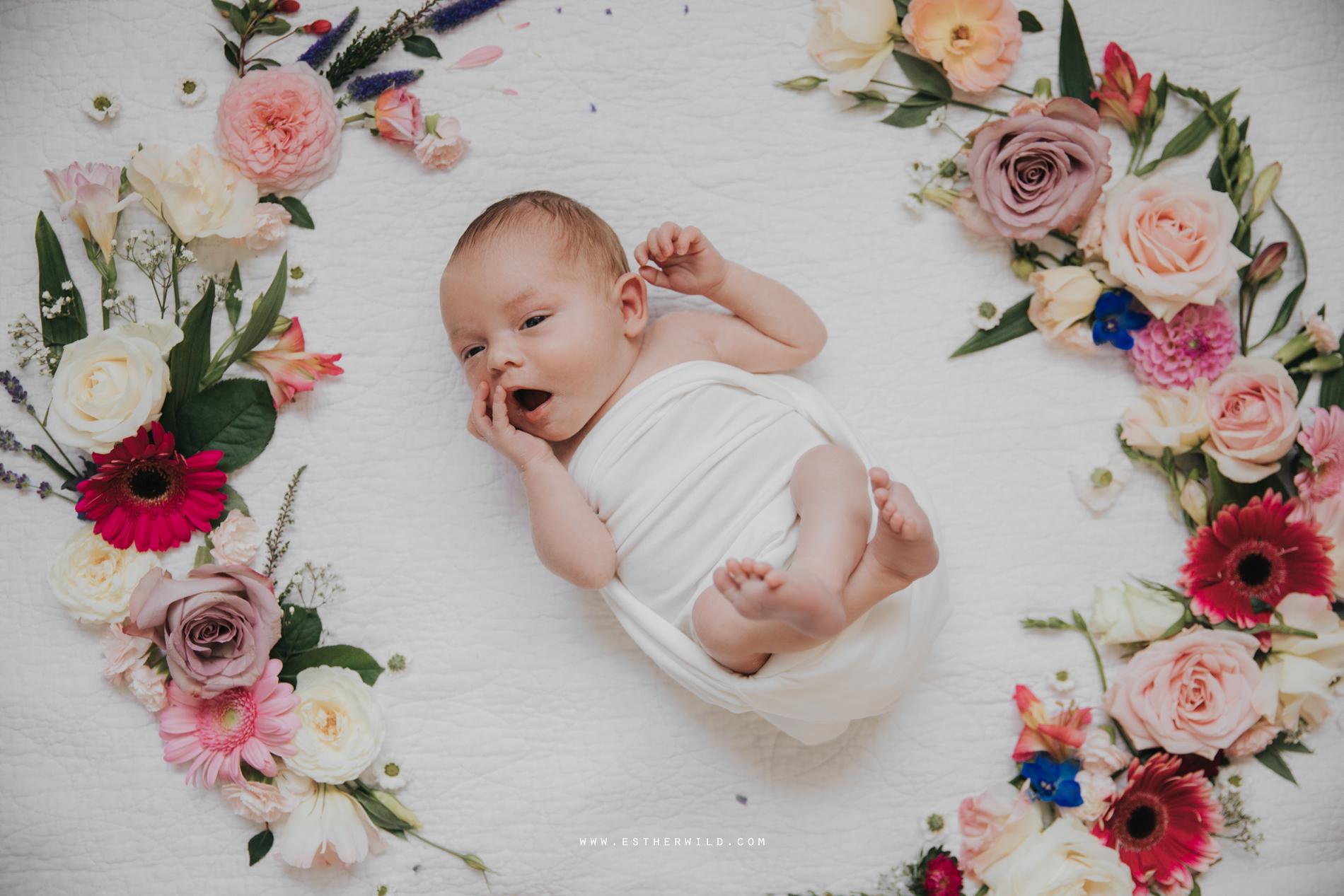Newborn_Family_Photographer_Home_Norfolk_3R8A3836.jpg