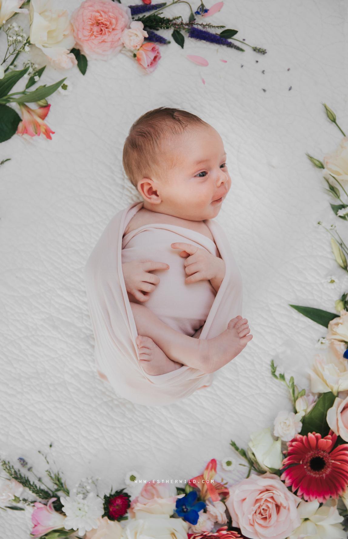 Newborn_Family_Photographer_Home_Norfolk_Newborn_Family_Photographer_Home_Norfolk_3R8A3719.jpg