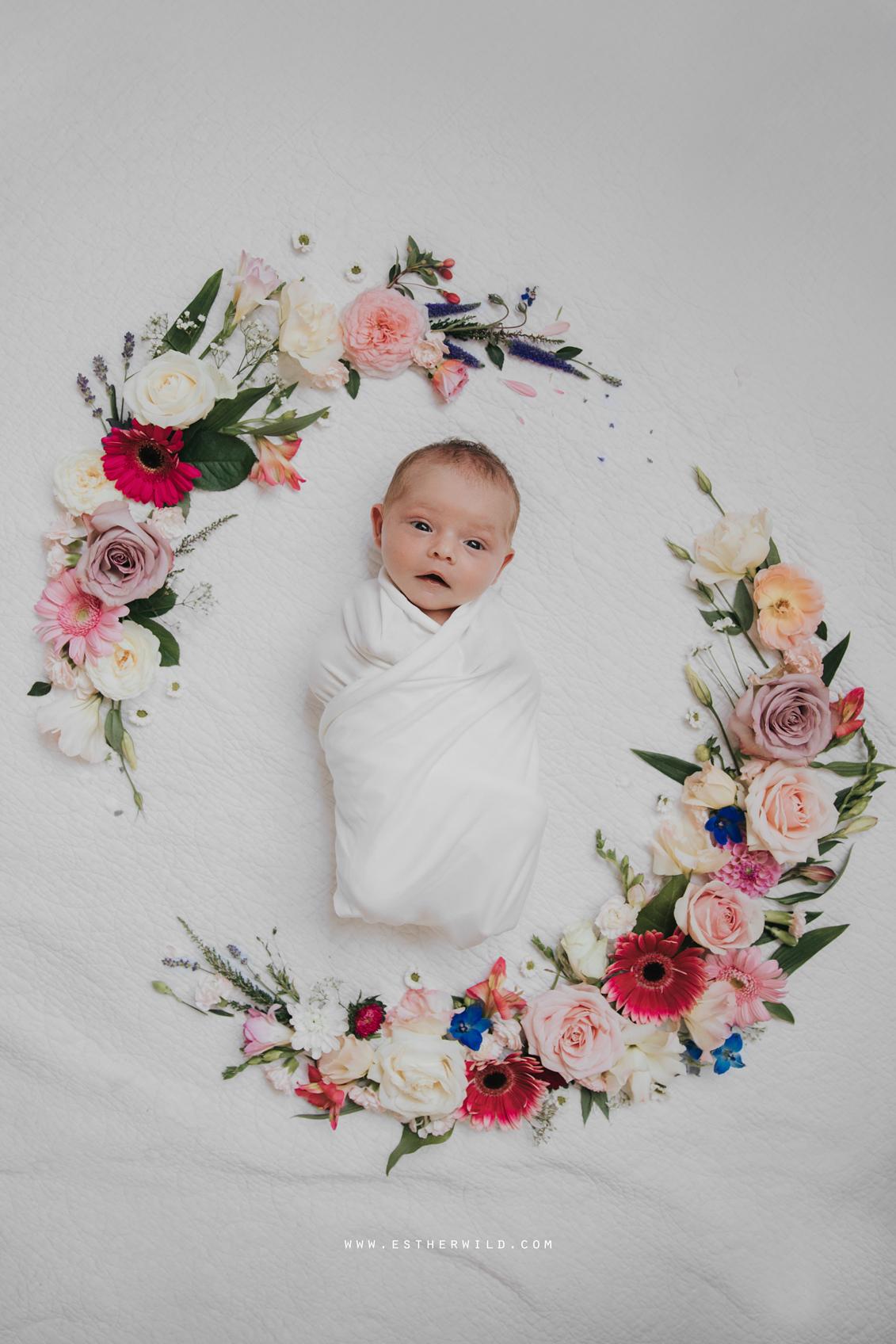 Newborn_Family_Photographer_Home_Norfolk_Newborn_Family_Photographer_Home_Norfolk_3R8A3743.jpg