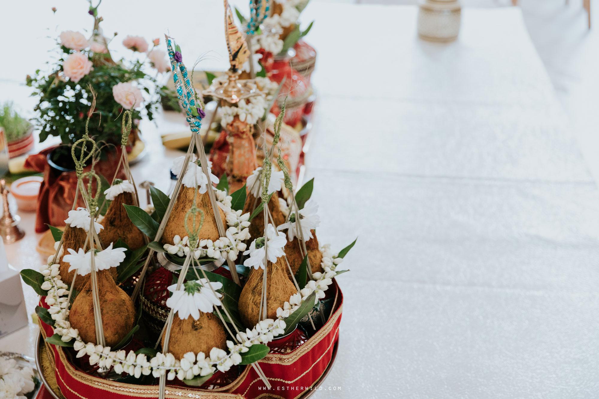 Northbrook_Park_Farnham_Surrey_London_Wedding_Hindu_Fusion_Esther_Wild_Photographer_IMG_3163.jpg