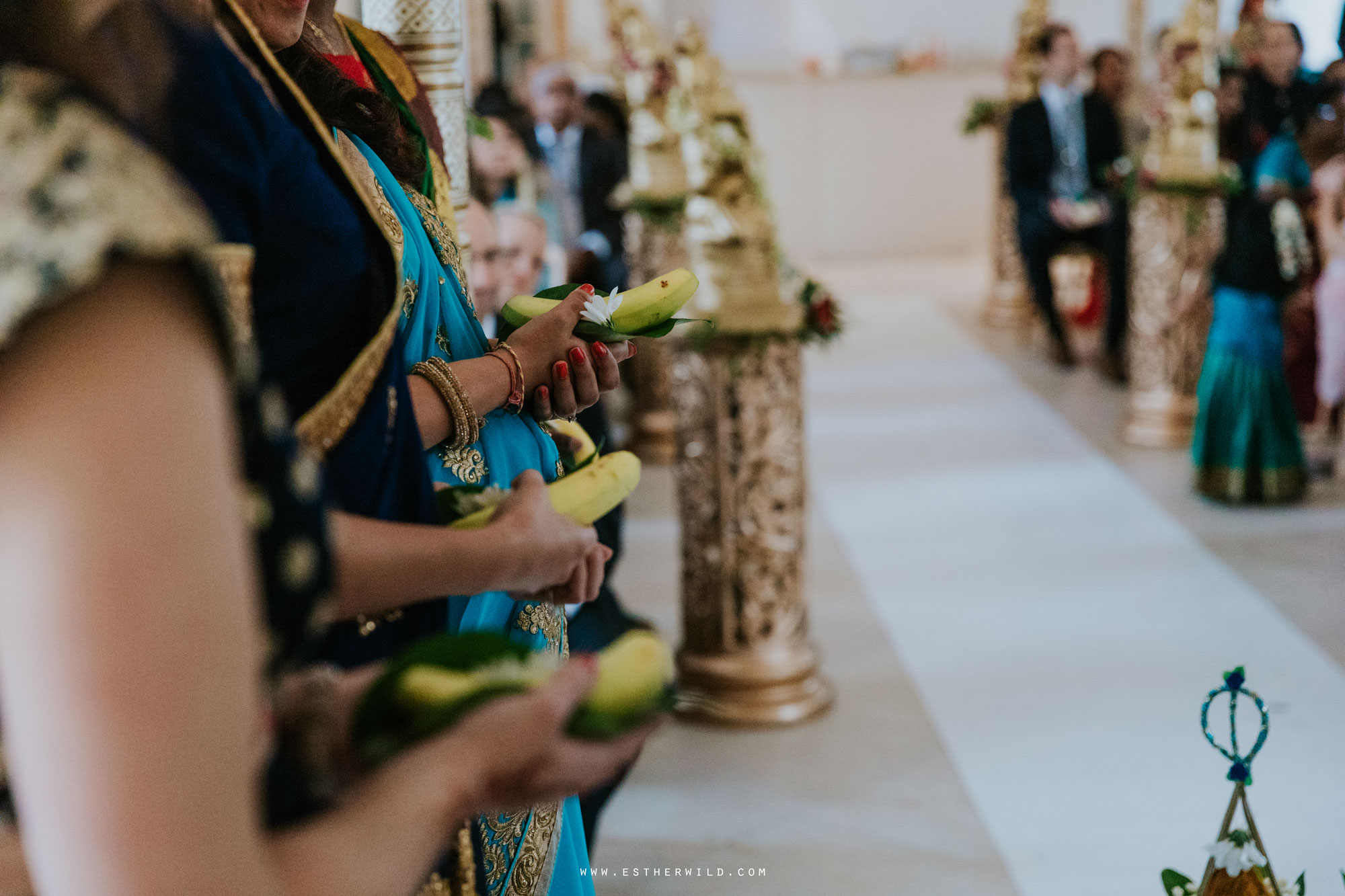 Northbrook_Park_Farnham_Surrey_London_Wedding_Hindu_Fusion_Esther_Wild_Photographer_IMG_3784.jpg