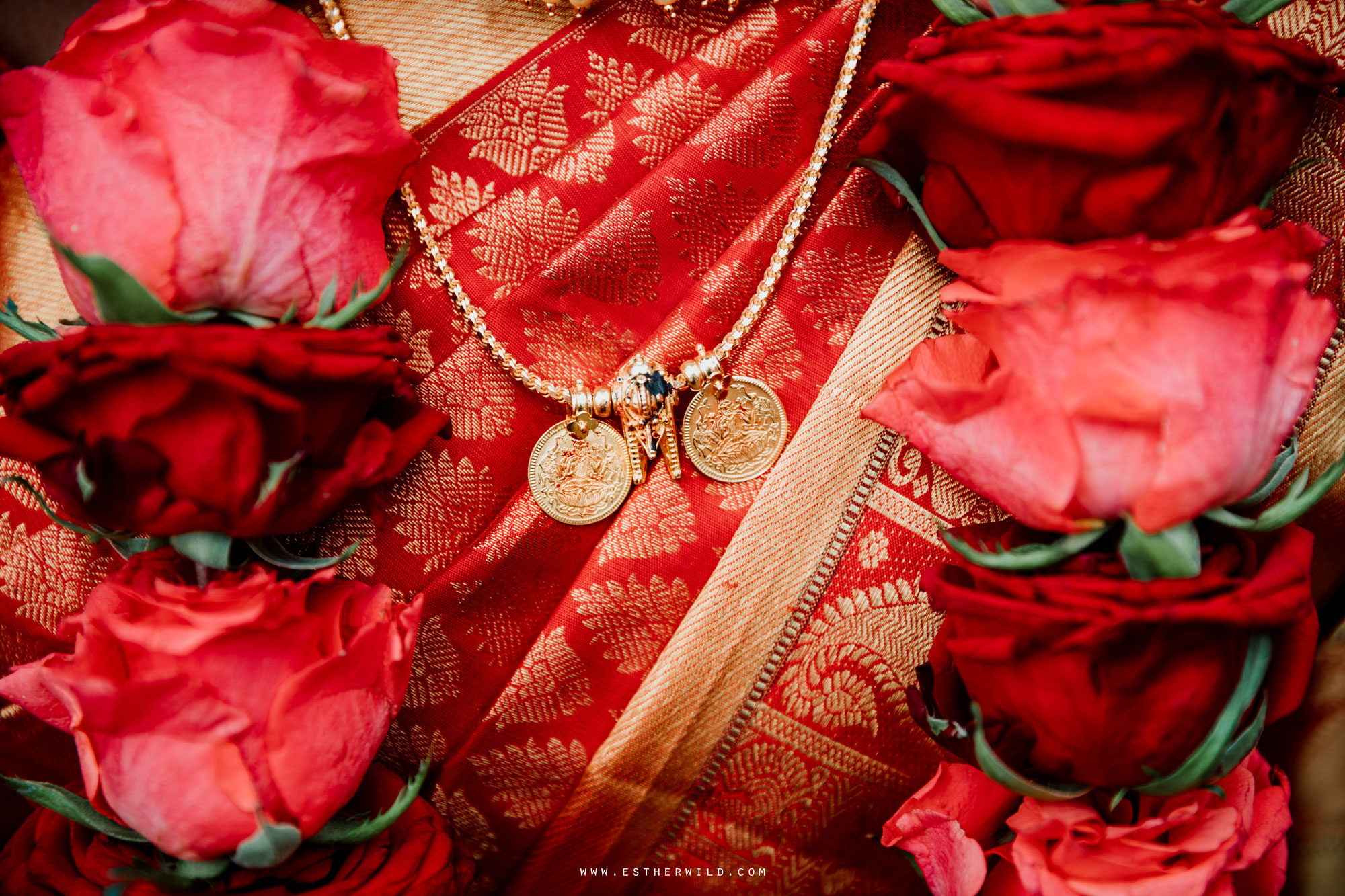 Northbrook_Park_Farnham_Surrey_London_Wedding_Hindu_Fusion_Esther_Wild_Photographer_IMG_5330.jpg