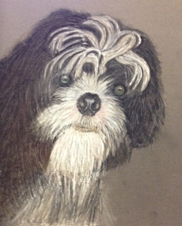 This is Pat's portrait of Winston in pastel