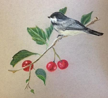 Watercolour from Brenda