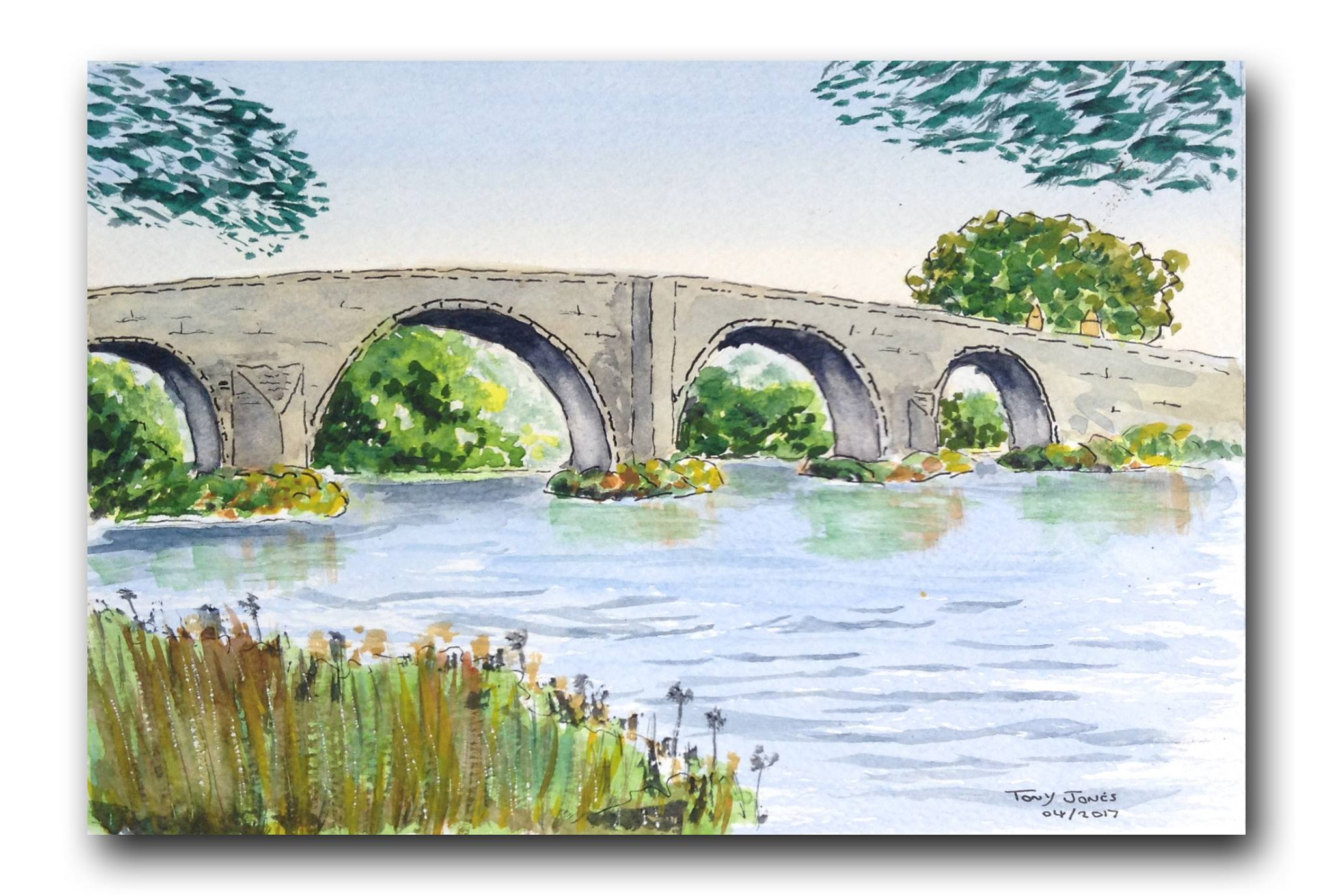 Tony Bridge.jpg