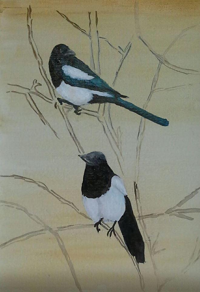 Colin bird.jpg