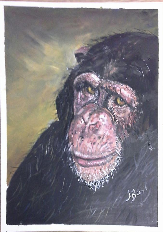 Janet ape.jpg