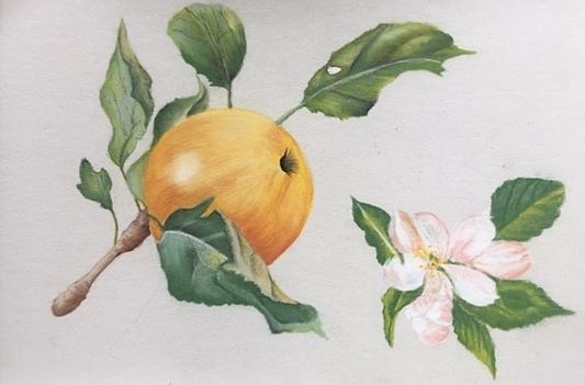 Linda+fruit+paste;.jpg