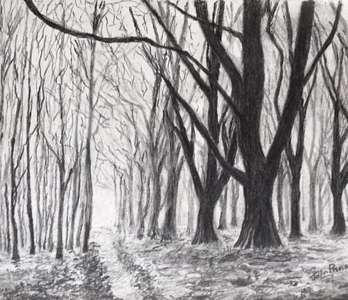 John+trees.jpg