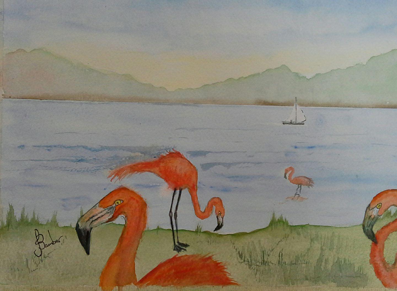 Jimmy Flamingo.jpg