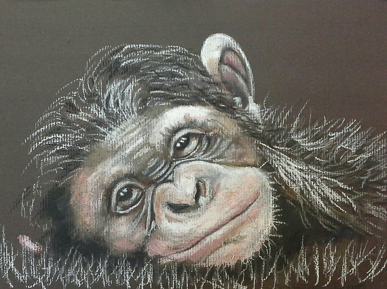 Janets ape.jpg