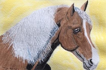 Tom+Palameno+horse.jpg