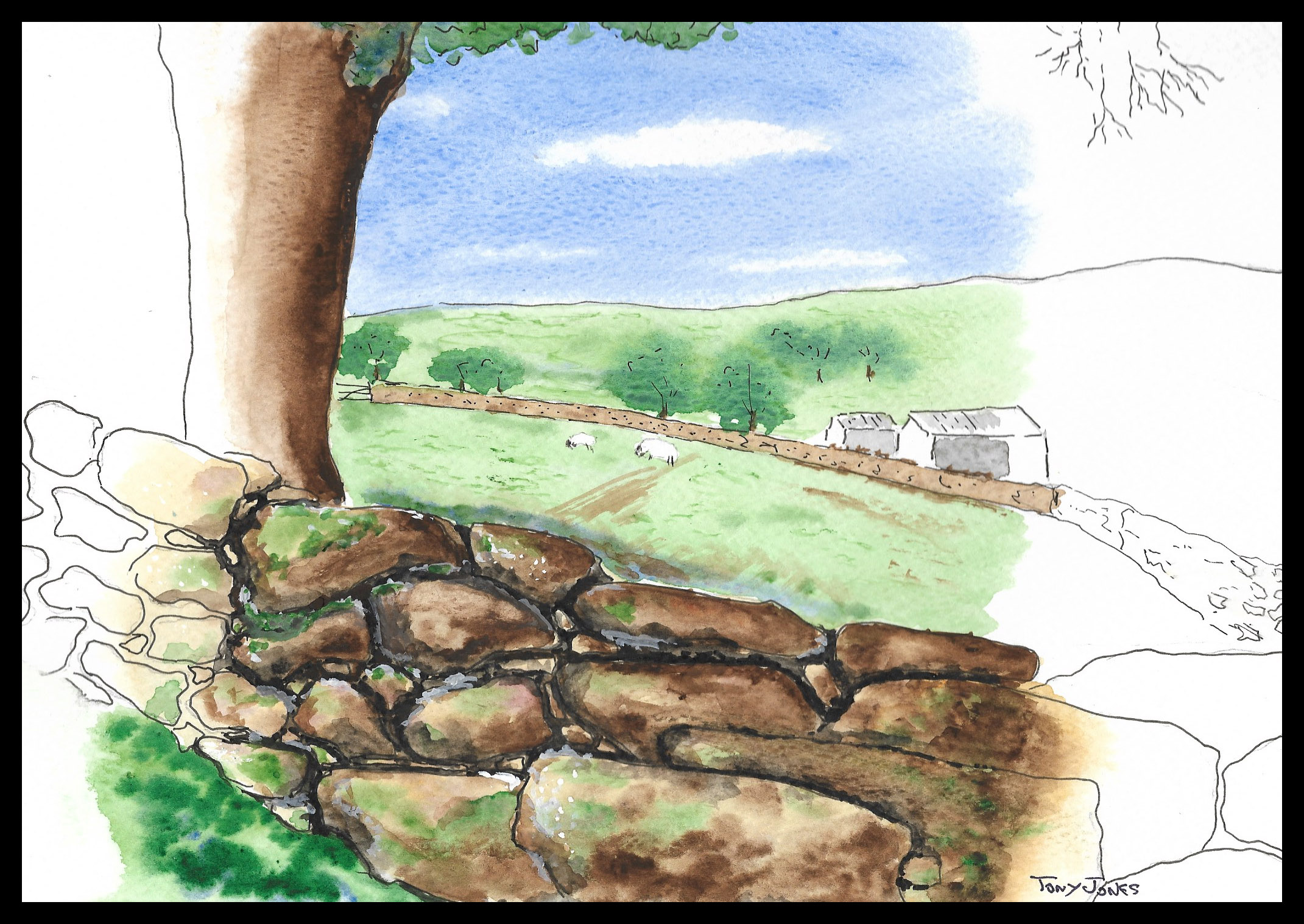 Tony J stone wall copy.jpg