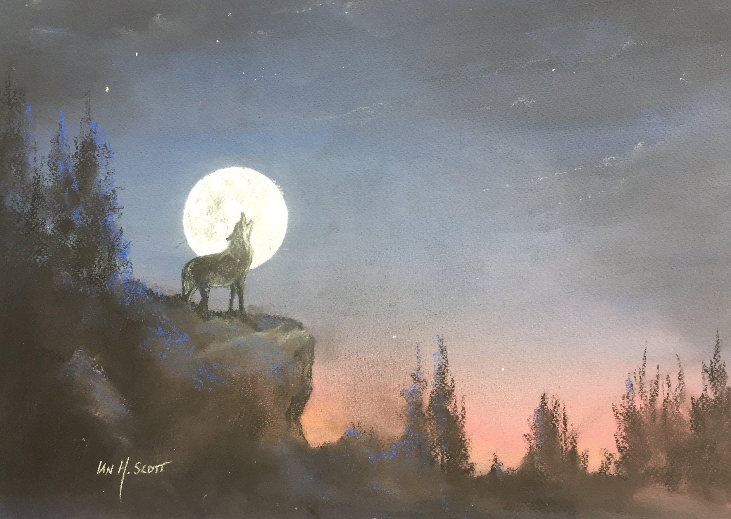 Ian Scott wolf.jpg