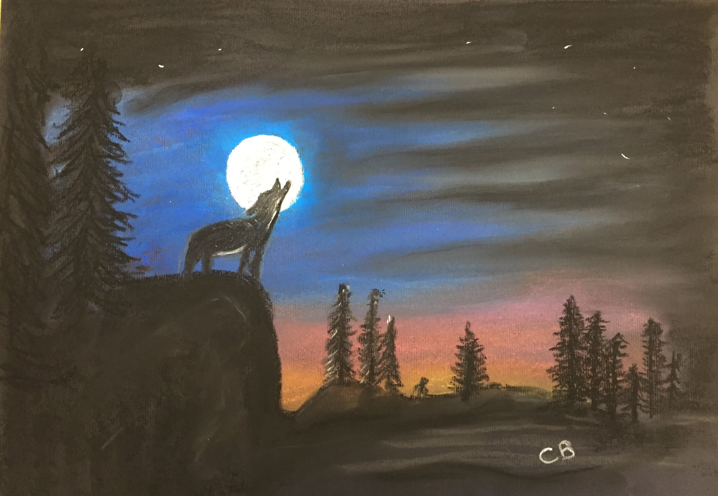 CB wolf.jpg