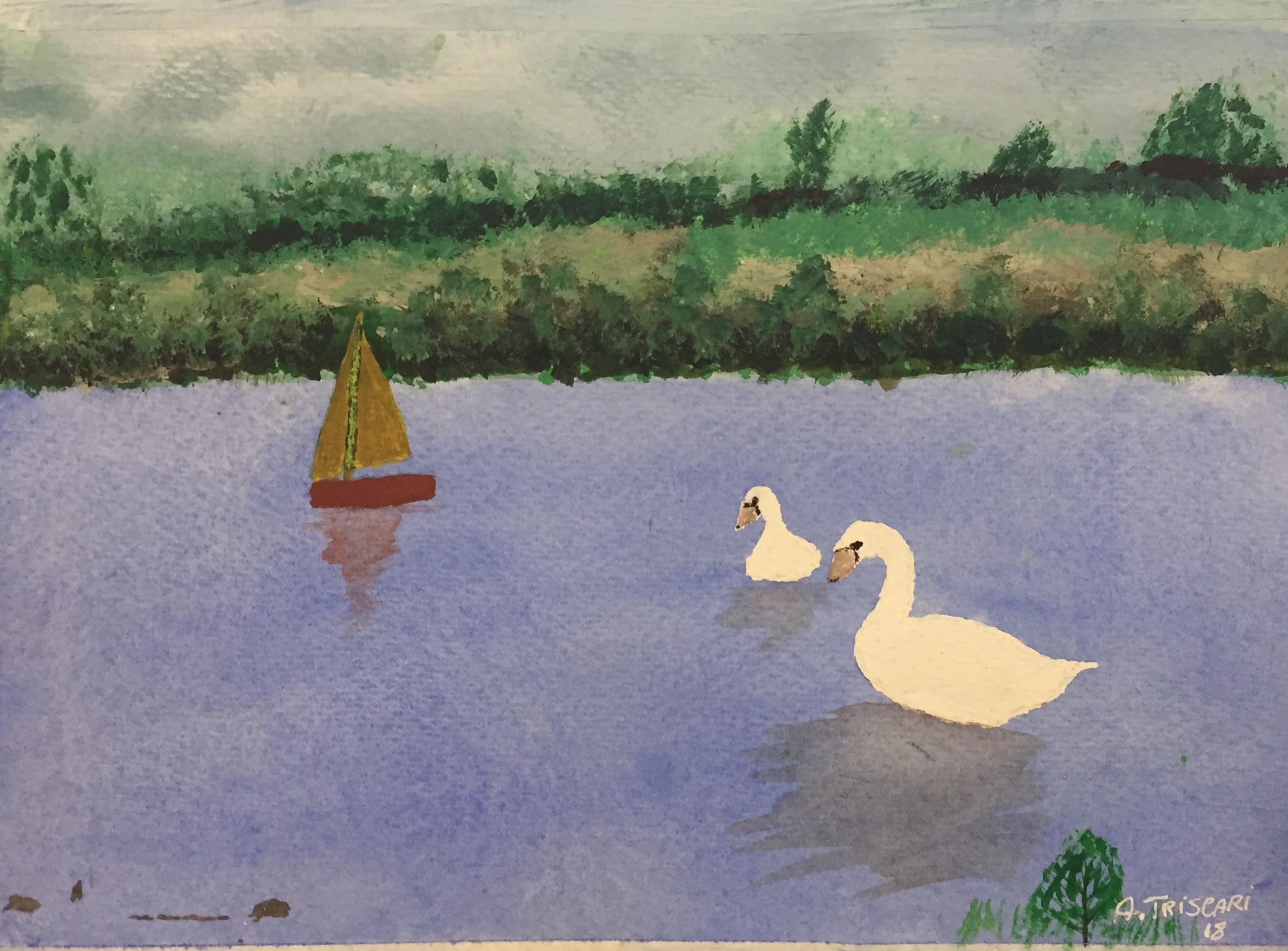 TT swans.jpg