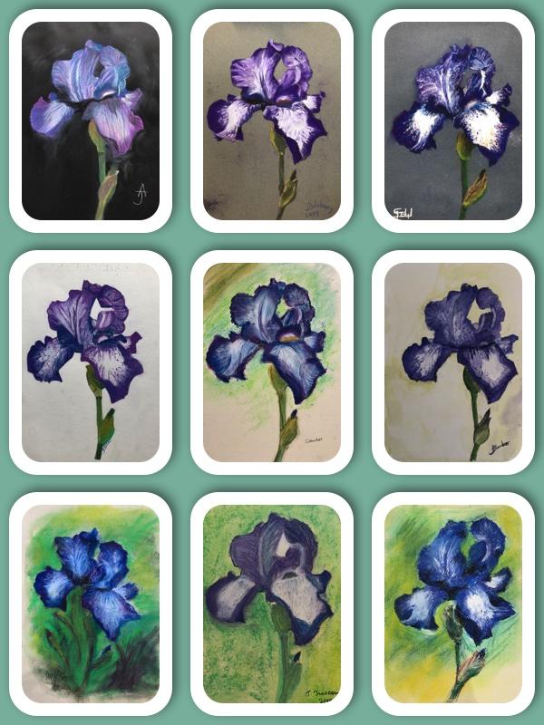 iris collage.jpg