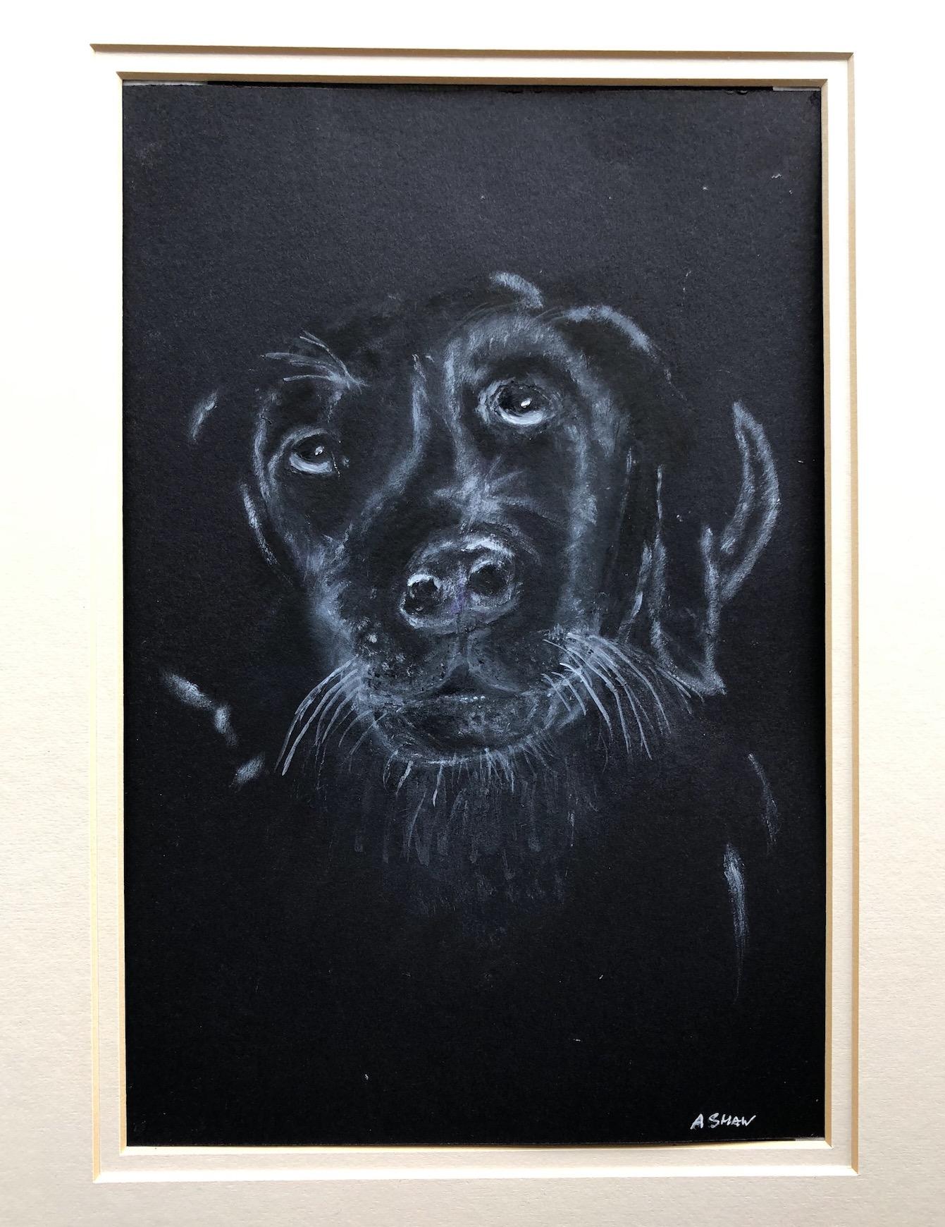 Anne Shaw dog.jpg