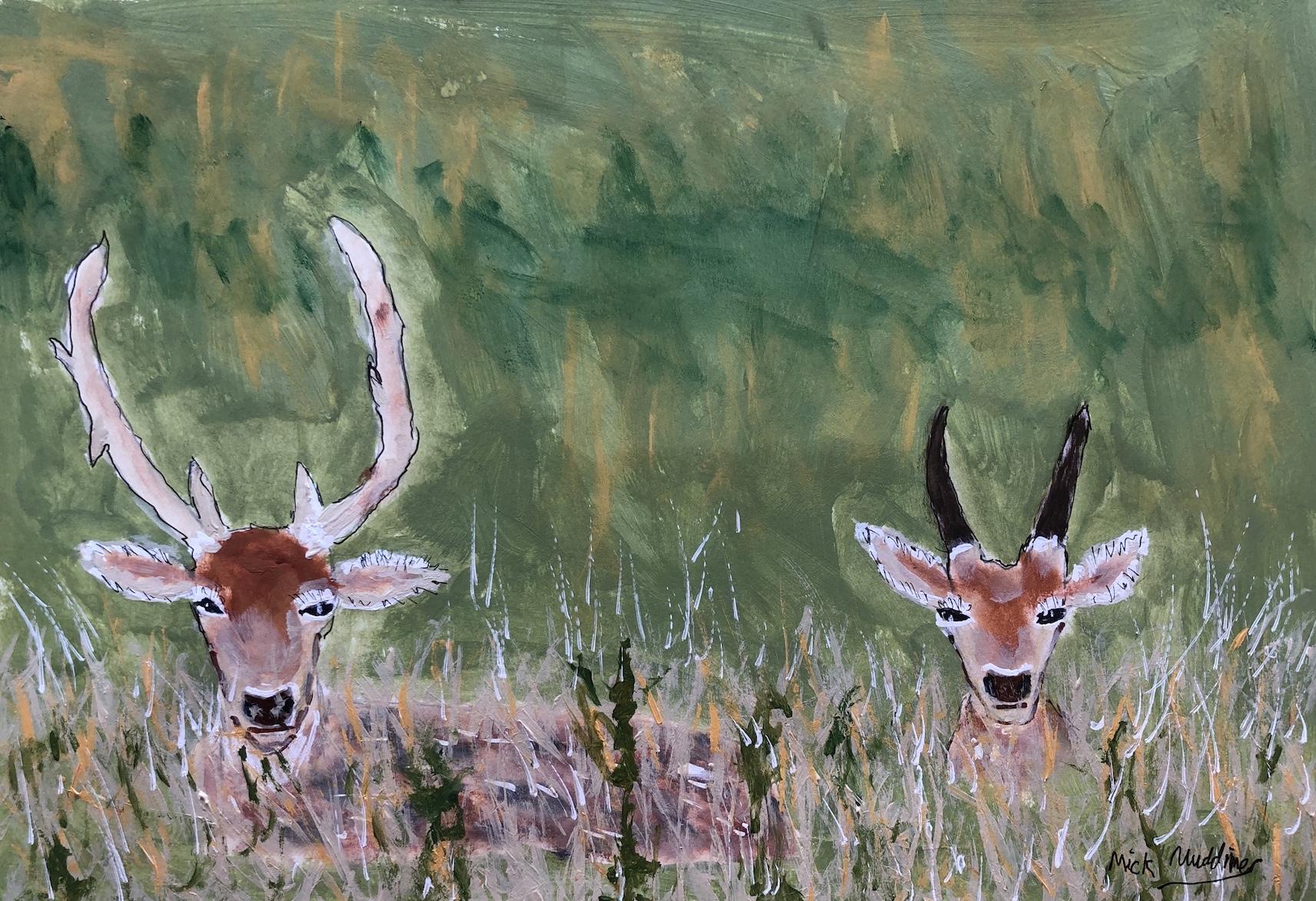 Mick deer.jpg