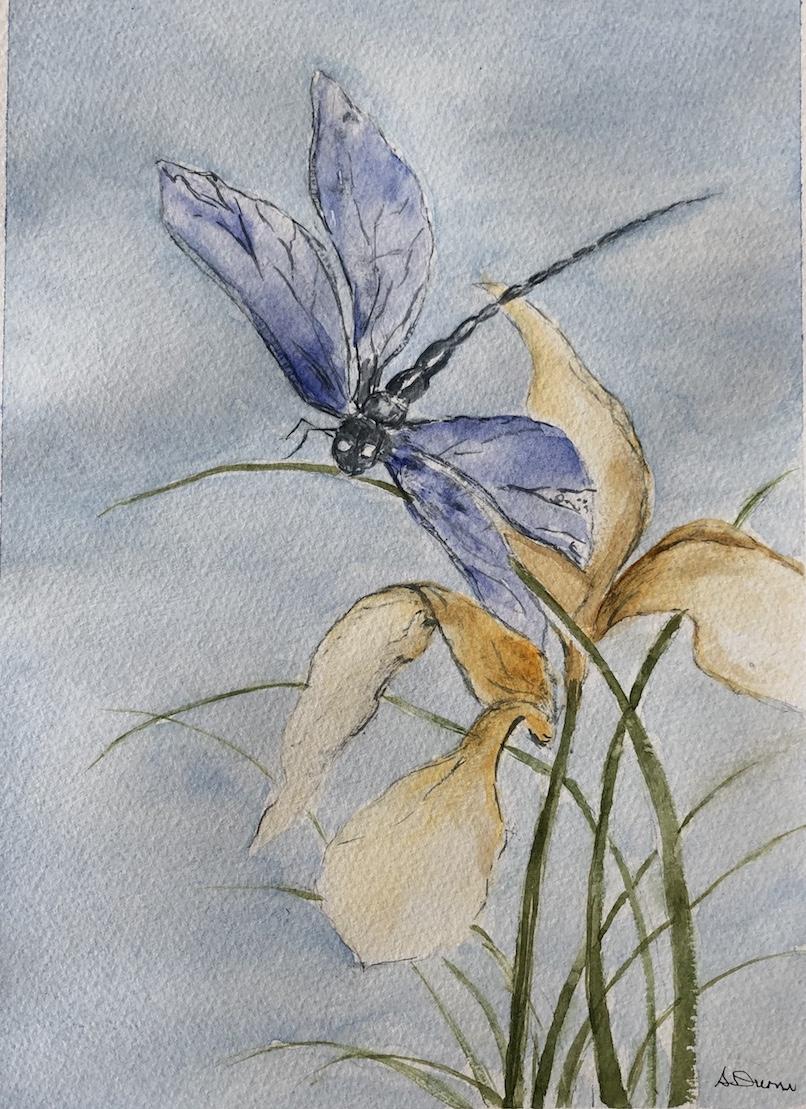 Angela dragonfly.jpg
