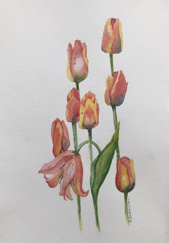 Sue flower.jpg