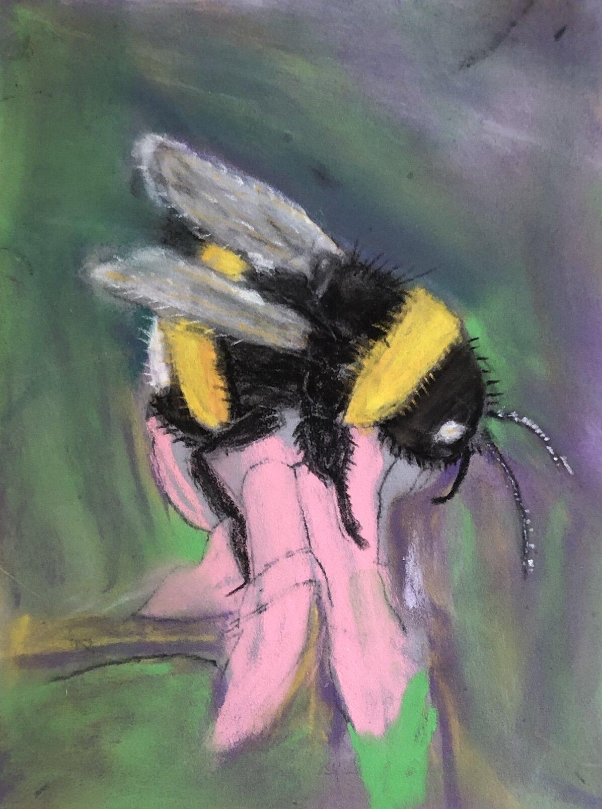 TT Bee.jpg