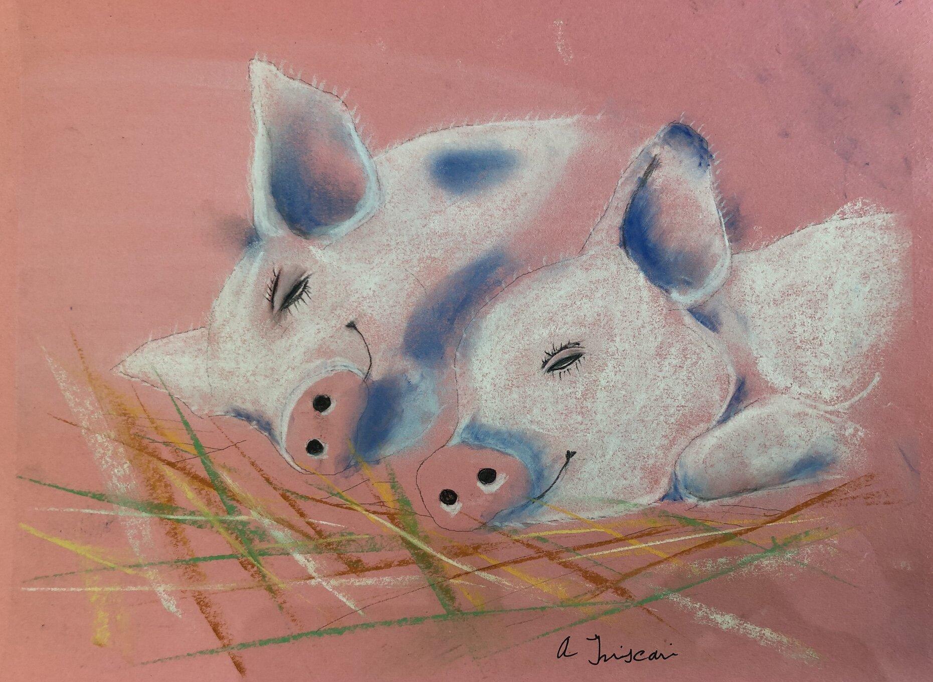 TT pigs.jpg