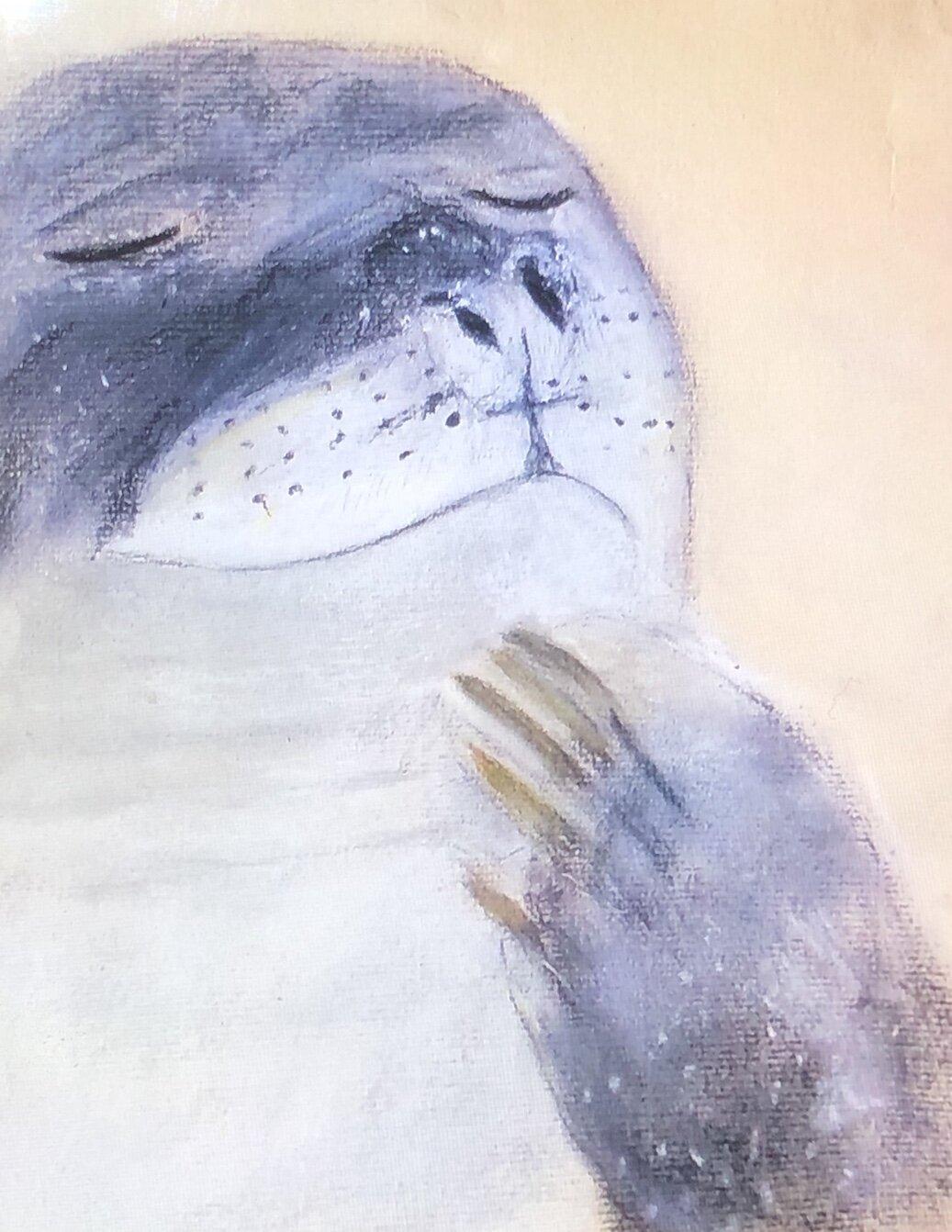 Ann walruss.jpg