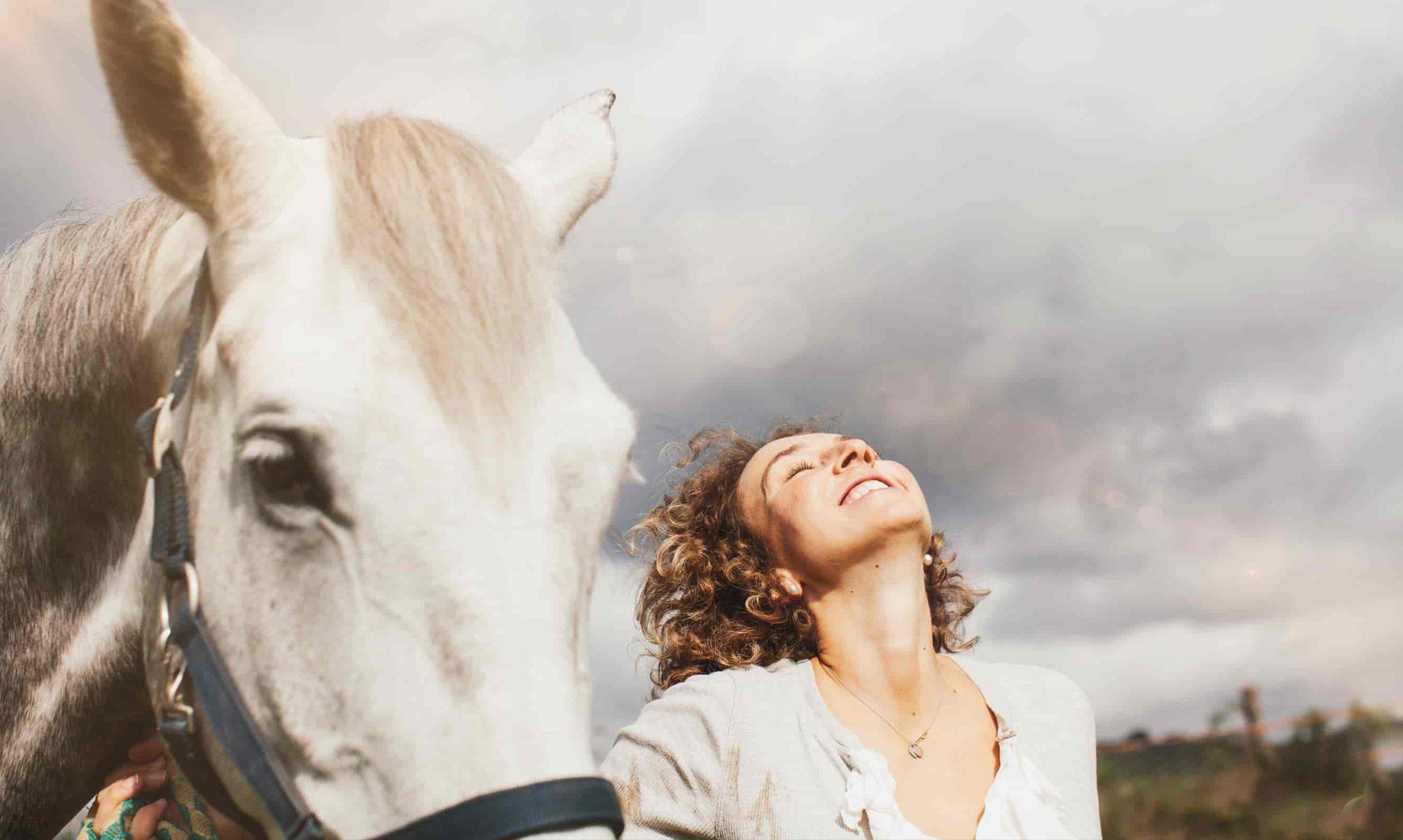 Sensitive Horse Experience