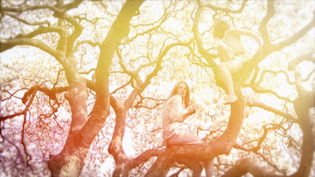 Magnolia (02).jpg