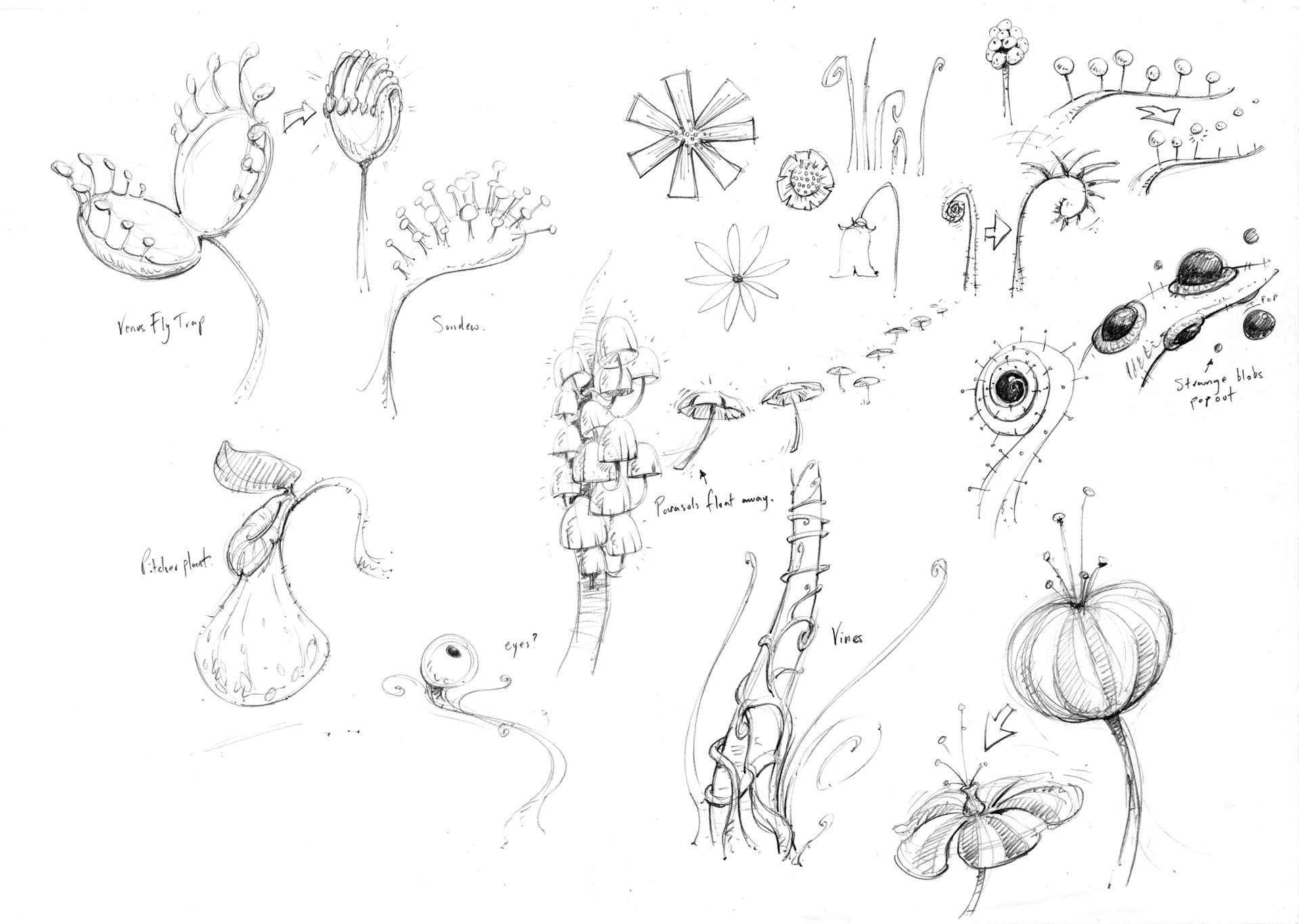 Plants_001.jpg