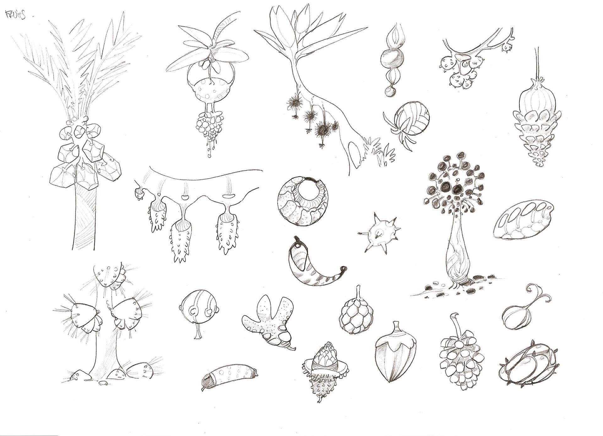 fruits02.jpg